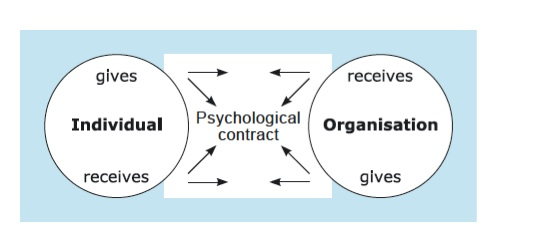Psychological Contract Organizing A Detailed Informational Website